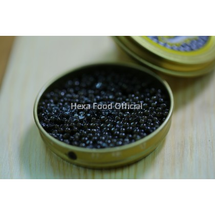 Best Quality Fresh Malaysian Siberian Kaluga Hybrid Caviar 30gm